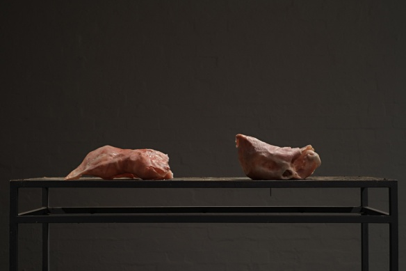 Flesh Lumps, Installation, Photo: Kerry Leonard