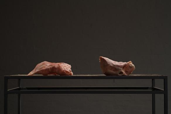 Flesh Lumps, Installation, Photo: Kerry Leonard