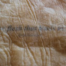 'the flesh that binds us' (detail of text embedded in the latex skin)